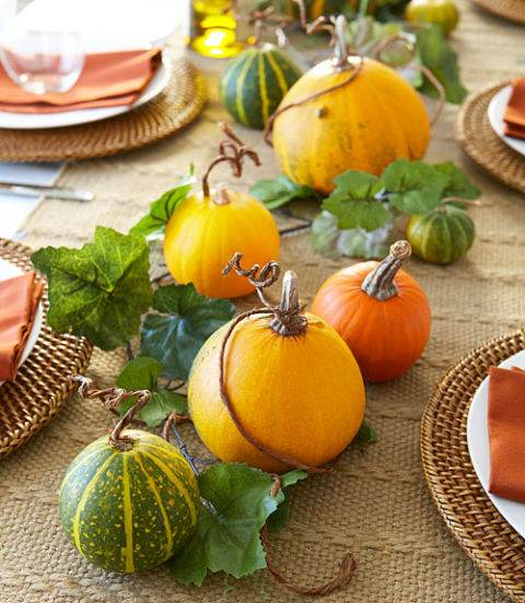 A Pumpkin Patch on your Table